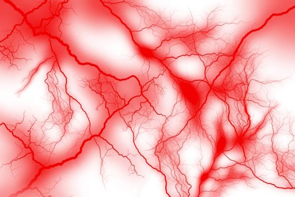シトルリン 血流